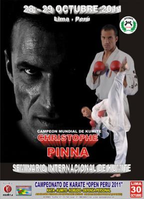 """""""Seminario Internacional de Kumite"""" por CHRISTOPHE  PINNA (Francia)"""